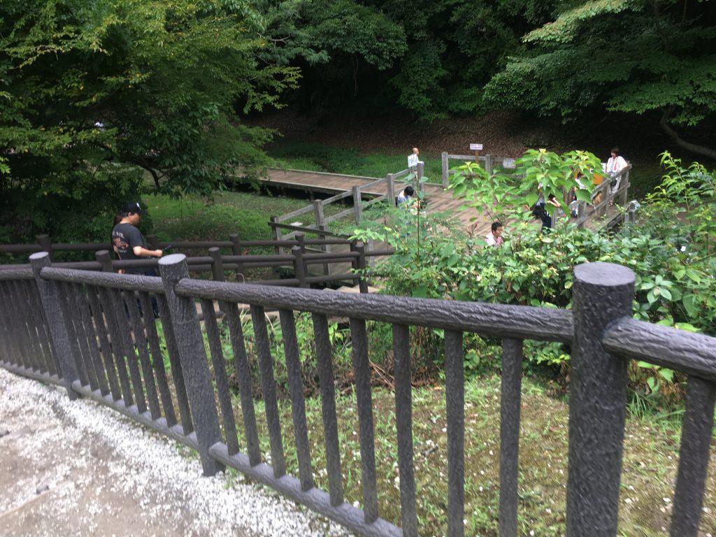 濃溝の滝階段