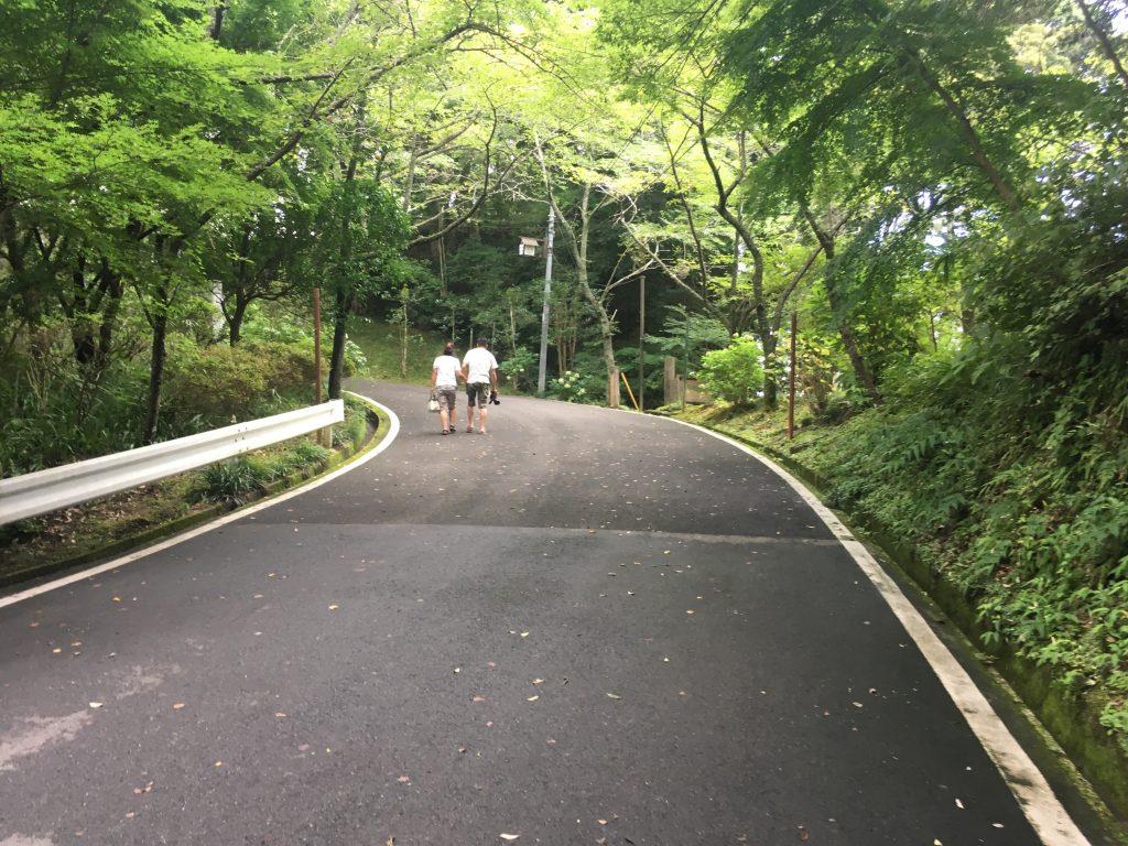 大多喜城の道