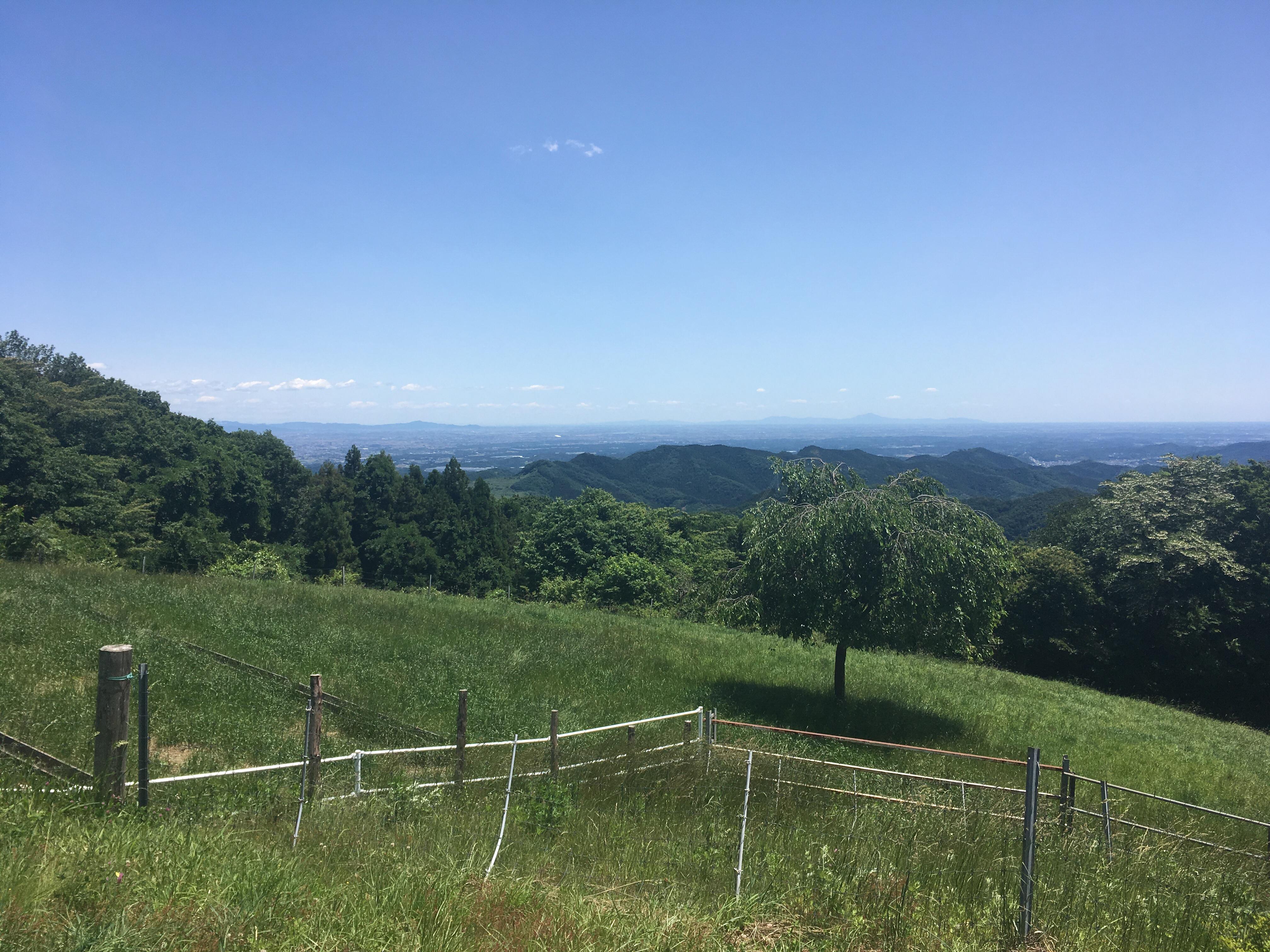 都内から一番近くの高原 秩父高原牧場に行ってみた。